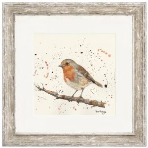 Ralph the Robin Framed Print
