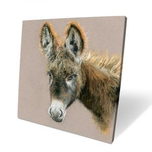 Dolores the Donkey Box Canvas